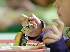Пищевое отравление - причины, источники заражения