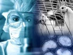 Создание эффективной иммунной защиты