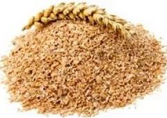 Когда противопоказаны ванны с пшеничными отрубями
