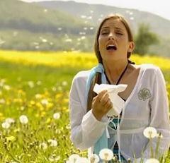 Аллергия на траву тимофеевку: диагностика. лечение