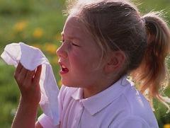 Сенная лихорадка: проявления, современное иммунологическое лечение